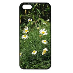 Wild Daisy Summer Flowers Apple Iphone 5 Seamless Case (black) by picsaspassion