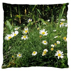 Wild Daisy Summer Flowers Large Flano Cushion Case (one Side) by picsaspassion