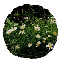 Wild Daisy Summer Flowers Large 18  Premium Flano Round Cushions by picsaspassion
