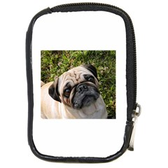 Pug Fawn Compact Camera Cases by TailWags