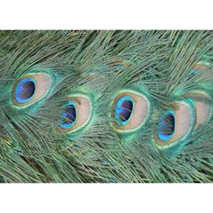 Peacock Feathers Macro Birthday Cake 3d Greeting Card (7x5) by GiftsbyNature