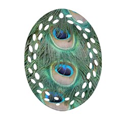 Peacock Feathers Macro Oval Filigree Ornament (2 Side)  by GiftsbyNature