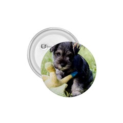 Puppy 2 Mini Schnauzer 1 75  Buttons by TailWags