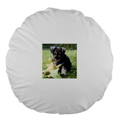 Puppy 2 Mini Schnauzer Large 18  Premium Flano Round Cushions by TailWags