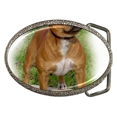 Staffordshire Bull Terrier Full Belt Buckles by TailWags