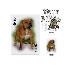 Staffordshire Bull Terrier Full Playing Cards 54 (Mini)  by TailWags