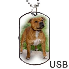 Staffordshire Bull Terrier Full Dog Tag USB Flash (One Side) by TailWags