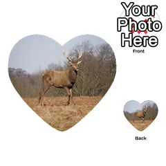 Red Deer Stag On A Hill Multi Purpose Cards (heart)  by GiftsbyNature