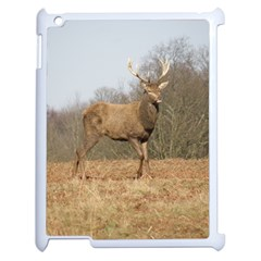 Red Deer Stag On A Hill Apple Ipad 2 Case (white) by GiftsbyNature