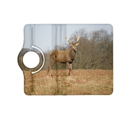 Red Deer Stag On A Hill Kindle Fire Hd (2013) Flip 360 Case by GiftsbyNature
