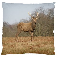 Red Deer Stag On A Hill Large Flano Cushion Case (two Sides) by GiftsbyNature