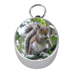 Gray Squirrel Eating Sycamore Seed Mini Silver Compasses by GiftsbyNature