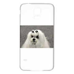 Maltese Samsung Galaxy S5 Back Case (White) by TailWags