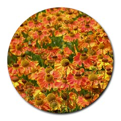 Helenium Flowers And Bees Round Mousepads by GiftsbyNature