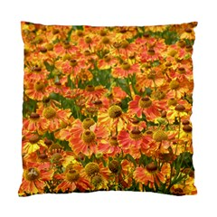 Helenium Flowers And Bees Standard Cushion Case (one Side) by GiftsbyNature