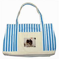 Norwegian Elkhound Full second Striped Blue Tote Bag by TailWags