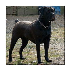 Cane Corso Full Tile Coasters by TailWags