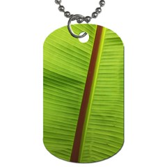 Ensete Leaf Dog Tag (one Side) by picsaspassion