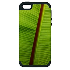 Ensete Leaf Apple Iphone 5 Hardshell Case (pc+silicone) by picsaspassion