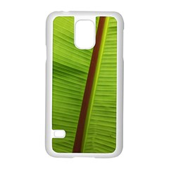 Ensete Leaf Samsung Galaxy S5 Case (white)
