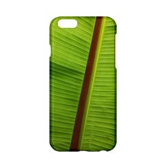 Ensete Leaf Apple Iphone 6/6s Hardshell Case by picsaspassion
