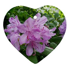 Purple Rhododendron Flower Ornament (heart)