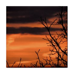 Tree Branches And Sunset Tile Coasters by picsaspassion