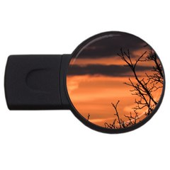 Tree Branches And Sunset Usb Flash Drive Round (4 Gb)  by picsaspassion