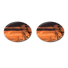 Tree Branches And Sunset Cufflinks (oval) by picsaspassion