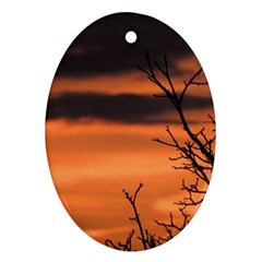 Tree Branches And Sunset Oval Ornament (two Sides) by picsaspassion