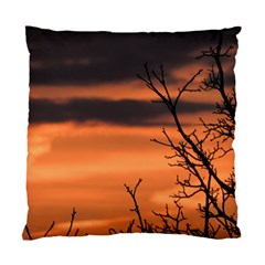 Tree Branches And Sunset Standard Cushion Case (one Side) by picsaspassion