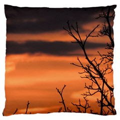 Tree Branches And Sunset Large Cushion Case (two Sides) by picsaspassion