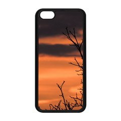 Tree Branches And Sunset Apple Iphone 5c Seamless Case (black) by picsaspassion