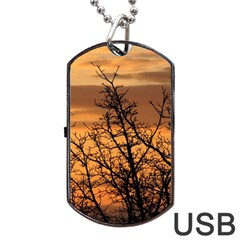 Colorful Sunset Dog Tag Usb Flash (one Side) by picsaspassion