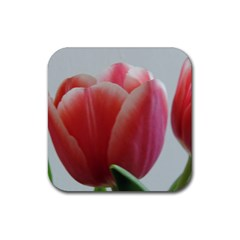 Red   White Tulip Flower Rubber Square Coaster (4 Pack)  by picsaspassion