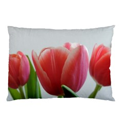 Red Tulips Pillow Case by picsaspassion