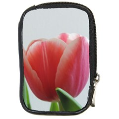 Red Tulips Compact Camera Cases by picsaspassion
