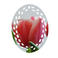 Red Tulips Oval Filigree Ornament (2 Side)  by picsaspassion
