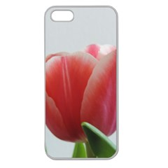 Red Tulips Apple Seamless Iphone 5 Case (clear) by picsaspassion