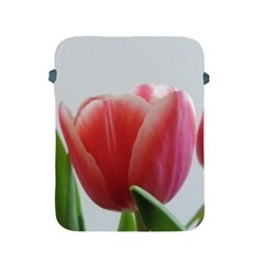 Red Tulips Apple Ipad 2/3/4 Protective Soft Cases by picsaspassion