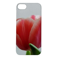 Red Tulips Apple Iphone 5s/ Se Hardshell Case by picsaspassion