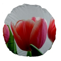 Red Tulips Large 18  Premium Flano Round Cushions by picsaspassion