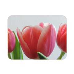 Red Tulips Double Sided Flano Blanket (mini)