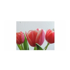 Red Tulips Satin Wrap by picsaspassion