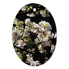 Blooming Japanese Cherry Flowers Ornament (oval)