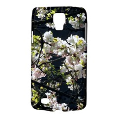 Blooming Japanese Cherry Flowers Galaxy S4 Active by picsaspassion