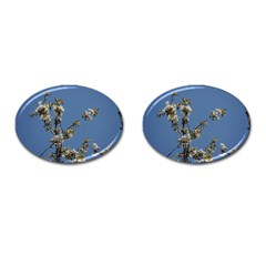 White Cherry Flowers And Blue Sky Cufflinks (oval) by picsaspassion