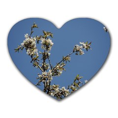 White Cherry Flowers And Blue Sky Heart Mousepads by picsaspassion