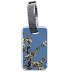 White Cherry Flowers And Blue Sky Luggage Tags (one Side)  by picsaspassion