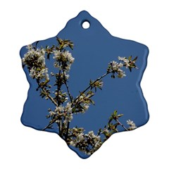 White Cherry Flowers And Blue Sky Ornament (snowflake)  by picsaspassion